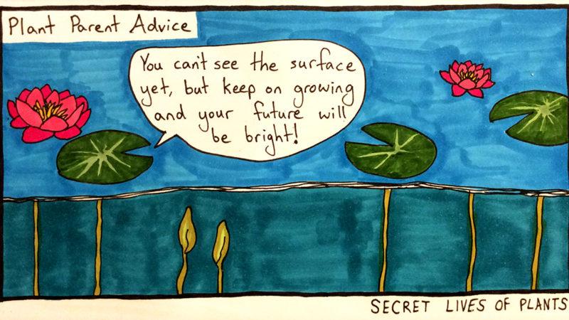 Second Plant Comic
