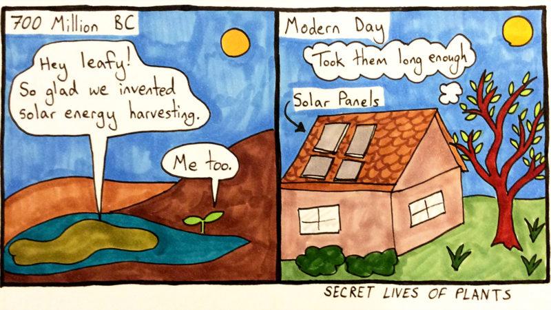 Third Plant Comic